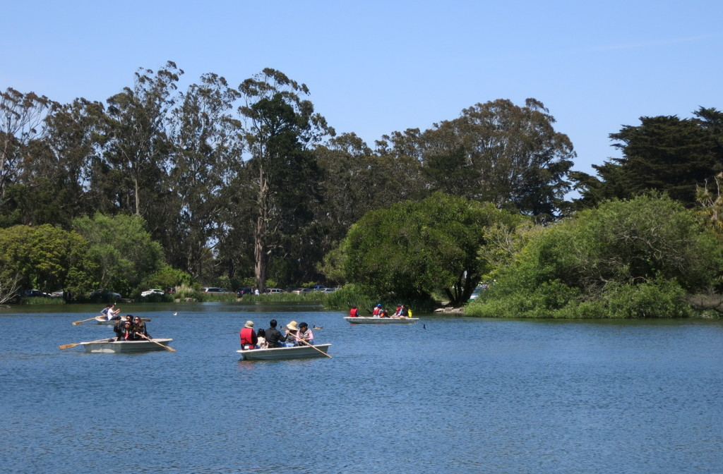 Row boats in the lake