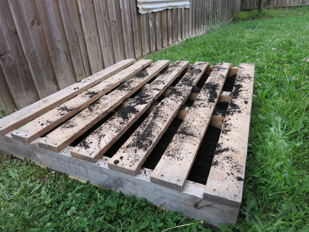 The pallet is filled with dirt and ready for planting