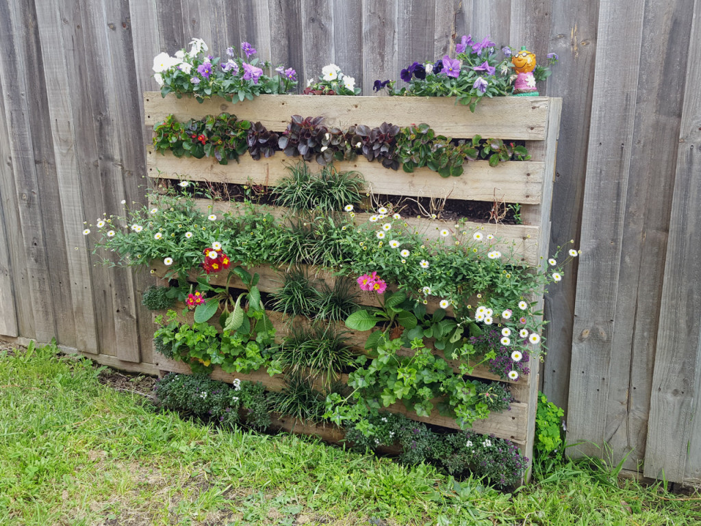 Completed vertical garden